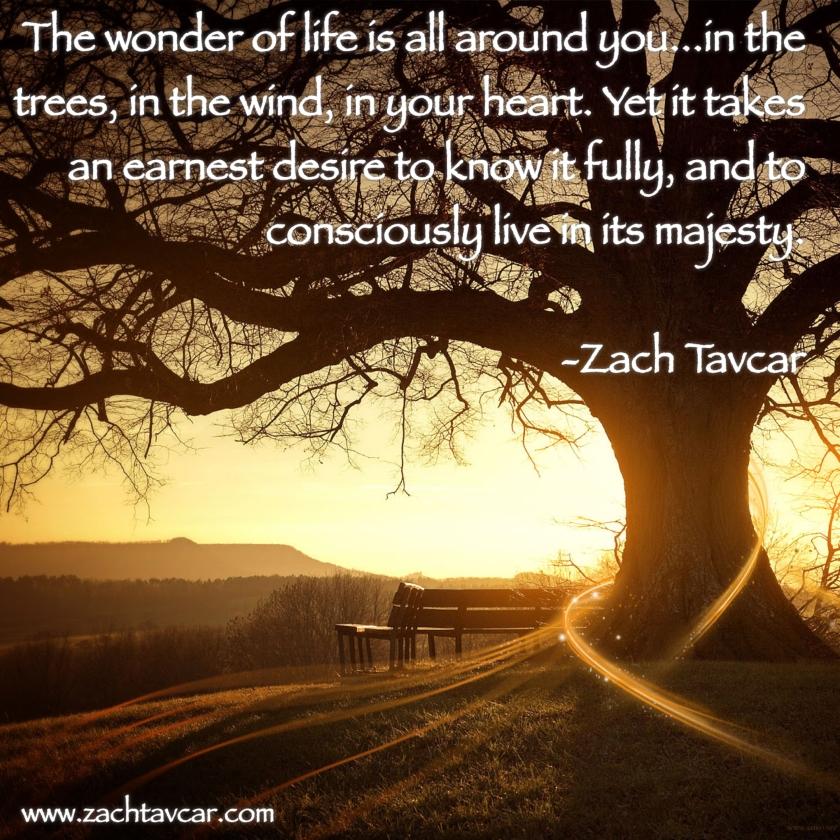 Inspirational quotes, personal trainer reno nv, life coach reno nv, Zach Tavcar, www.zachtavcar.com